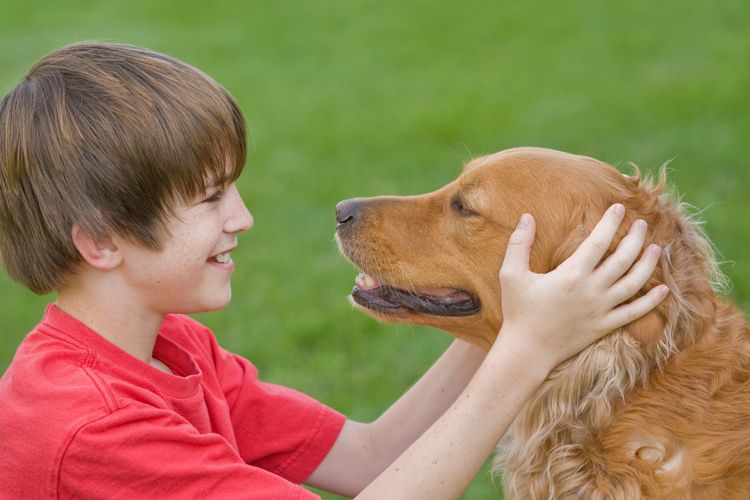 Nurturing-Health-and-Well-being-Through-Pet-Therapy