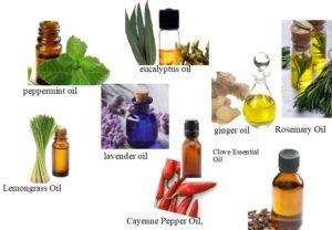 different aromatic oils