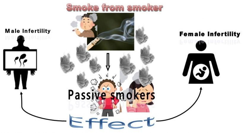 how passive smoking effects fertility
