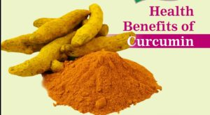 The Health Wonder - Curcumin