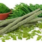 Drumstick - what are its benefits and medicinal properties?