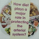 Do diet plays a major role in protecting the arterial system?