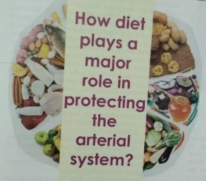 How diet plays a major role in protecting the arterial system?