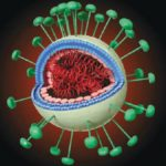 Three cases confirmed in India- Corona virus a Pandemic?