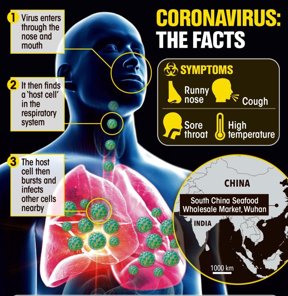 how-corona-virus-spreads