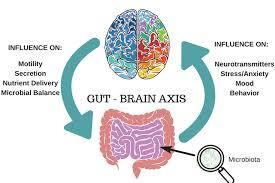 brain-and-gut-health